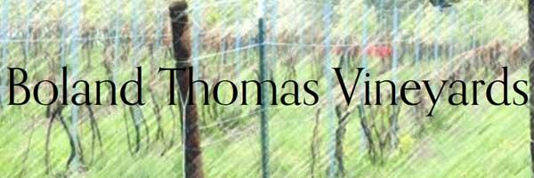 Boland Thomas Vineyards logo
